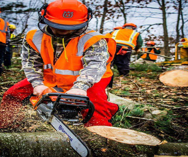 Chainsaws Forestry Clearing Saws,Pole Saws,Power Cutters,Stump Grinders,Log Splitters